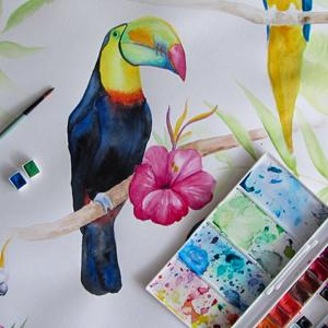 AKWARELE | Jak namalować tukana? SPEED ART