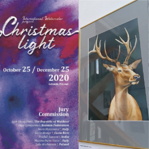 Międzynarodowa Wystawa Christmas Light w Gdańsku